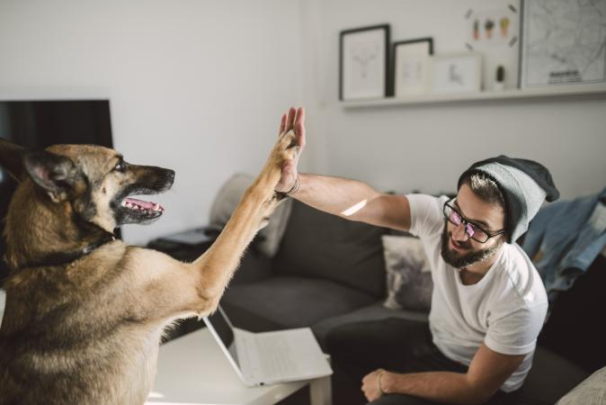 man giving high five with dog