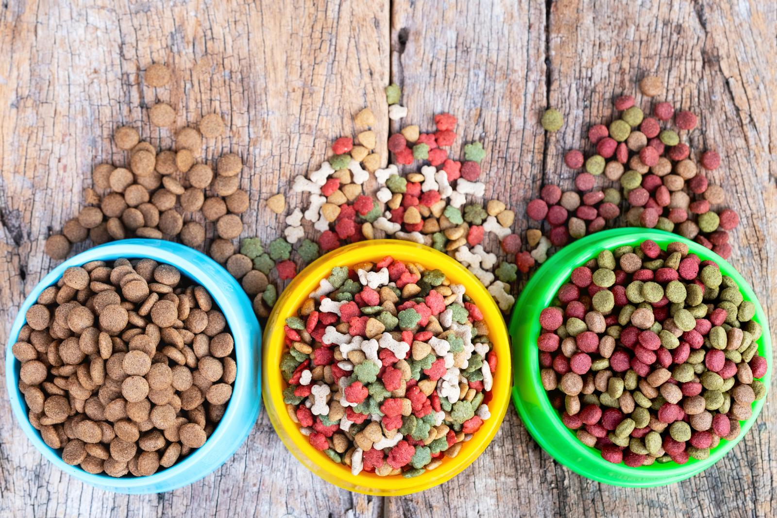 10 Best Dog Foods | LoveToKnow