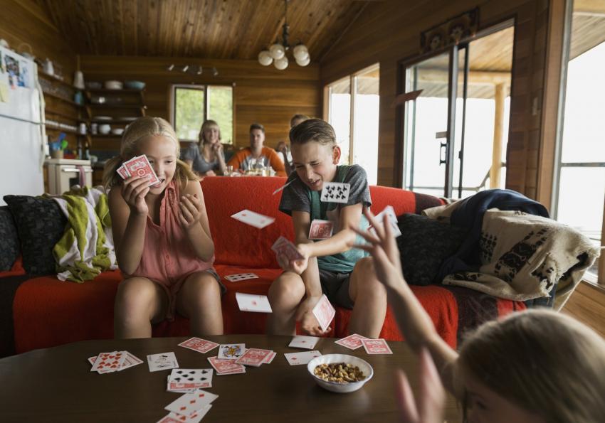 https://cf.ltkcdn.net/boardgames/images/slide/251398-850x595-11_Pig_Card_Game.jpg