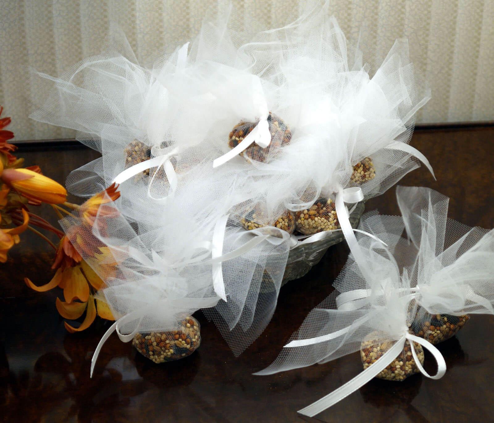 semillas-pajaro.jpg