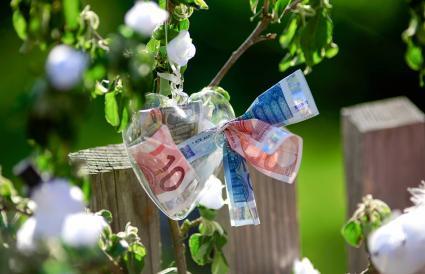 Arbol de dinero en boda