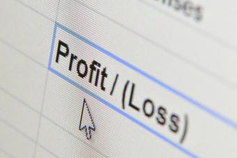 Profit and Loss Blank Form
