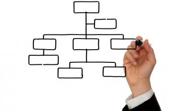 Blank Organization Charts