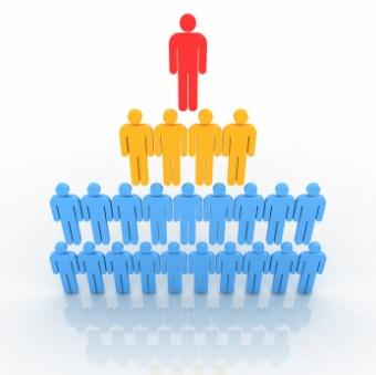 Types of Organizational Structures for Businesses