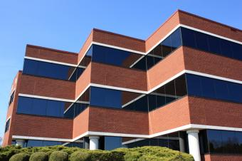 How Much Office Space Does Your Business Need?