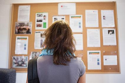Woman studying advertising on community bulletin board