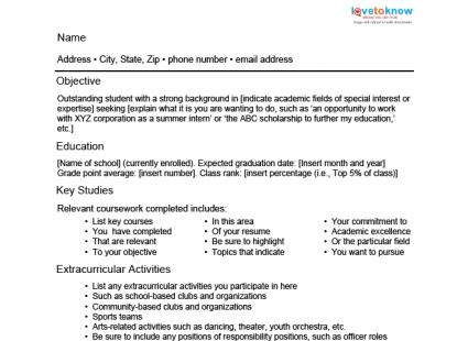 Academic Resume Template  Examples Of Academic Resumes