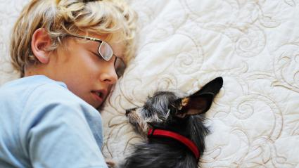 Boy and dog napping