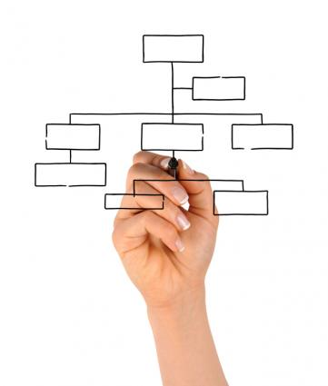 Outline Your Organization's Structure