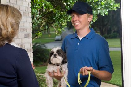 How To Start A Pet Sitting Business Lovetoknow