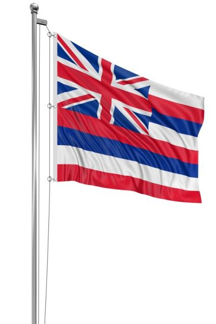 https://cf.ltkcdn.net/cake-decorating/images/slide/138375-424x636r1-HawaiiStateFlag.jpg