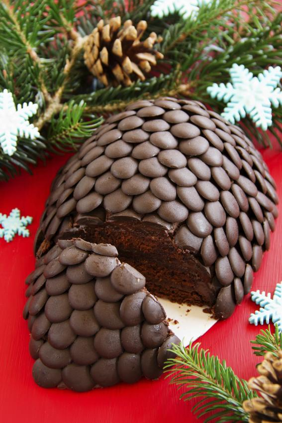 https://cf.ltkcdn.net/cake-decorating/images/slide/182618-567x850-fir-cone.jpg