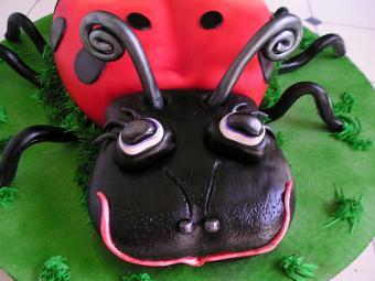 ladybug face