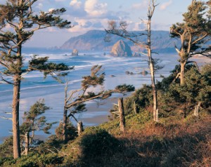 Oregon_Coast_Photo_by_Larry_Geddis-(300-x-238).jpg