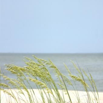 3 Gulf Shores RV Parks for a Comfortable Camping Getaway