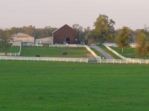 Kentucky_horse_farm.jpg