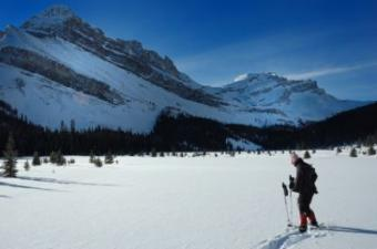 Snowshoes and Solitude