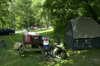 https://cf.ltkcdn.net/camping/images/slide/123051-534x350-CampingatMohicanStatePark.jpg