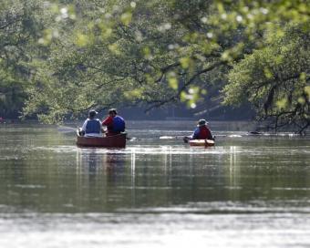 https://cf.ltkcdn.net/camping/images/slide/123167-600x480-Colleton-State-Park.jpg