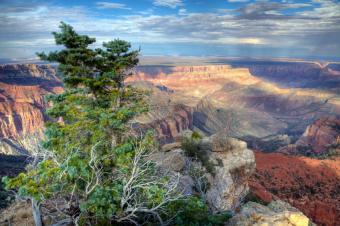 https://cf.ltkcdn.net/camping/images/slide/123221-849x565-Grand_canyon.jpg