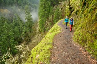 Steep Hiking Trail