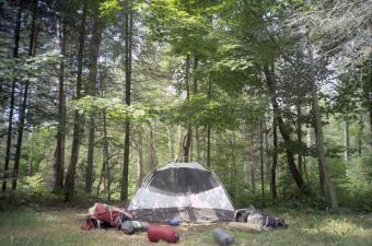 Camping in Newport State Park
