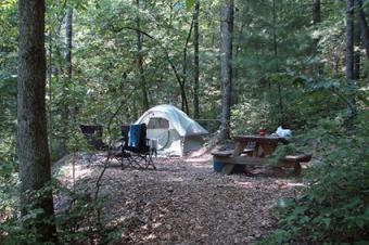 Ash Grove Tent Site