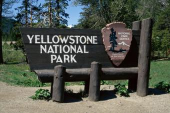 Planning a Trip to Yellowstone: An Essential Guide