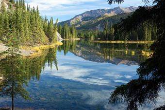 Making Your Visit to Denali National Park a Top-Tier Experience