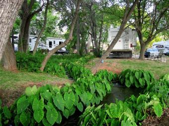 Page Springs Resort