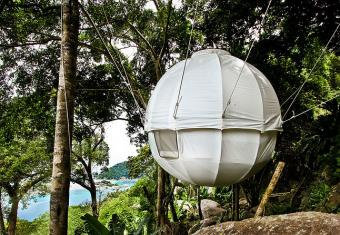 Cocoon Tree tent hanging in tree