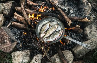 Rudd frying in a pan