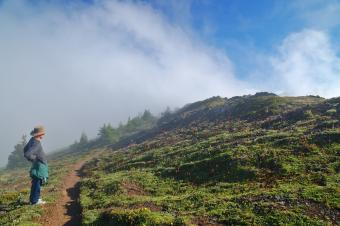 9 Breathtaking Trails to Go Hiking in Washington State