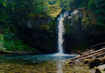 https://cf.ltkcdn.net/camping/images/slide/245617-850x593-Gifford-Pinchot-National-Forest.jpg