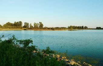 Lake At Maumee Bay State Park