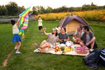 https://cf.ltkcdn.net/camping/images/slide/276129-850x567-playing-with-kite.jpg