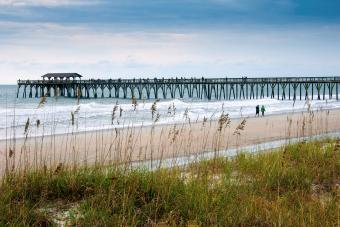 https://cf.ltkcdn.net/camping/images/slide/276286-850x566-sc-state-parks-myrtle-beach.jpg
