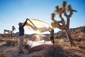 Campers assembling tent, Joshua Tree National Park, California