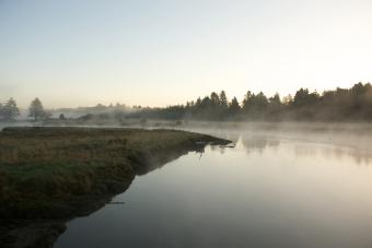 Morning on Copalis River