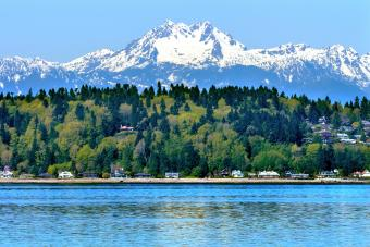 Puget Sound Mount and Olympus Snow Mountain