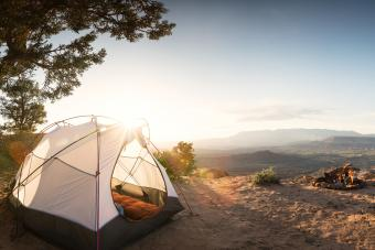 Tent Camping Under a Pinon Tree in the Desert