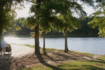 https://cf.ltkcdn.net/camping/images/slide/276445-850x566-lake-lincoln-state-park.jpeg