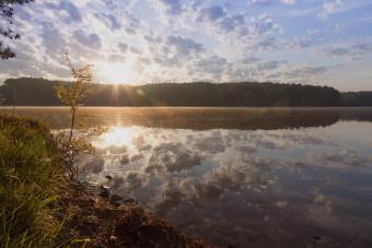 https://cf.ltkcdn.net/camping/images/slide/276449-850x566-natchez-state-park.jpg