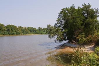 https://cf.ltkcdn.net/camping/images/slide/276451-850x566-tombigbee-river-at-demopolis.jpeg