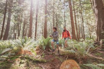 Mistletoe State Park Hiking Trails: A Quick Guide