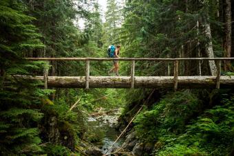 https://cf.ltkcdn.net/camping/images/slide/276803-850x566-olympic-national-park-1.jpg