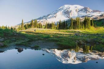 https://cf.ltkcdn.net/camping/images/slide/276815-850x566-mount-rainier-national-park.jpg