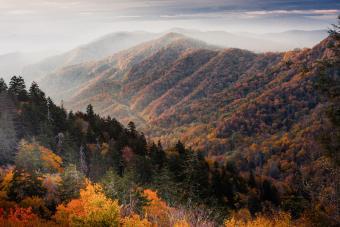 https://cf.ltkcdn.net/camping/images/slide/276821-850x566-great-smoky-mountains.jpg