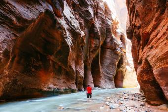 https://cf.ltkcdn.net/camping/images/slide/276838-850x566-zion-national-park-1.jpg