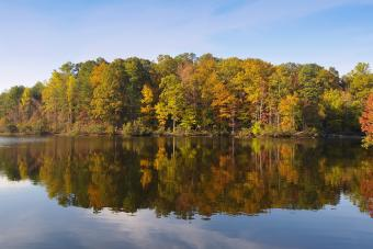 https://cf.ltkcdn.net/camping/images/slide/276842-850x566-falls-lake.jpg